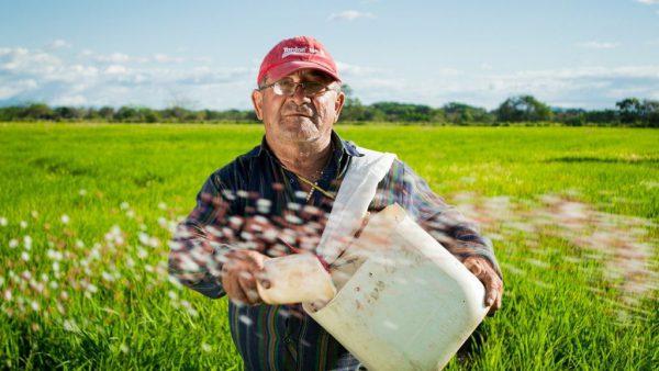 【2021年最新版】農業で外国人労働者を雇うには?